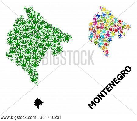 Vector Marijuana Mosaic And Solid Map Of Montenegro. Map Of Montenegro Vector Mosaic For Drug Legali