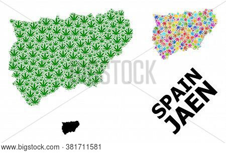 Vector Cannabis Mosaic And Solid Map Of Jaen Spanish Province. Map Of Jaen Spanish Province Vector M