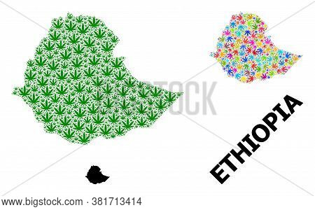 Vector Cannabis Mosaic And Solid Map Of Ethiopia. Map Of Ethiopia Vector Mosaic For Cannabis Legaliz