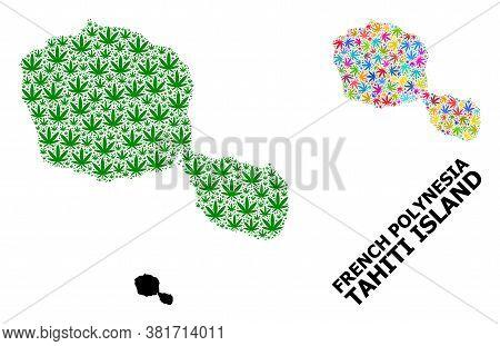 Vector Cannabis Mosaic And Solid Map Of Tahiti Island. Map Of Tahiti Island Vector Mosaic For Cannab