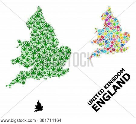Vector Weed Mosaic And Solid Map Of England. Map Of England Vector Mosaic For Drug Legalize Campaign