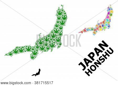 Vector Cannabis Mosaic And Solid Map Of Honshu Island. Map Of Honshu Island Vector Mosaic For Cannab