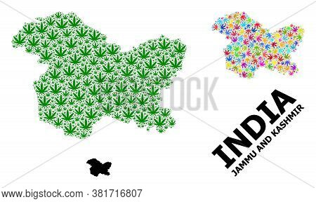 Vector Cannabis Mosaic And Solid Map Of Jammu And Kashmir State. Map Of Jammu And Kashmir State Vect