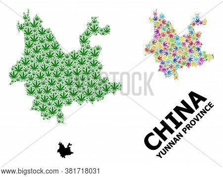 Vector Cannabis Mosaic And Solid Map Of Yunnan Province. Map Of Yunnan Province Vector Mosaic For Ca