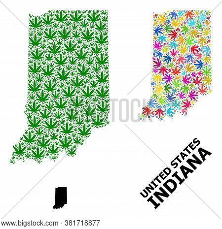 Vector Weed Mosaic And Solid Map Of Indiana State. Map Of Indiana State Vector Mosaic For Marijuana