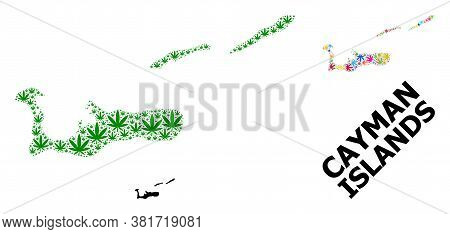 Vector Weed Mosaic And Solid Map Of Cayman Islands. Map Of Cayman Islands Vector Mosaic For Weed Leg