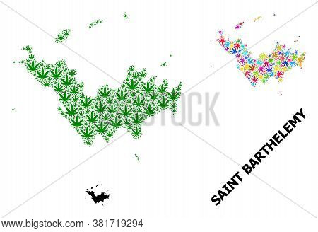 Vector Marijuana Mosaic And Solid Map Of Saint Barthelemy. Map Of Saint Barthelemy Vector Mosaic For