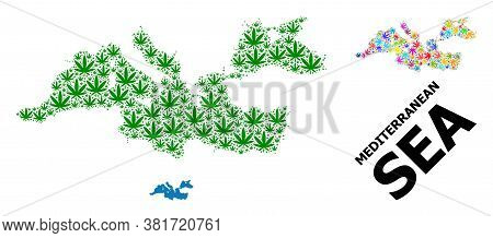 Vector Cannabis Mosaic And Solid Map Of Mediterranean Sea. Map Of Mediterranean Sea Vector Mosaic Fo