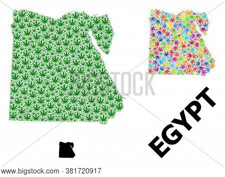 Vector Hemp Mosaic And Solid Map Of Egypt. Map Of Egypt Vector Mosaic For Hemp Legalize Campaign. Ma