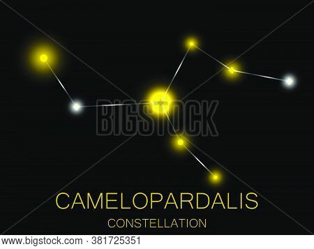 Camelopardalis Constellation. Bright Yellow Stars In The Night Sky. A Cluster Of Stars In Deep Space
