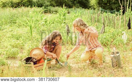 Growing Vegetables. Planting Vegetables. Sisters Together Helping At Farm. Garden And Beds. Rustic C