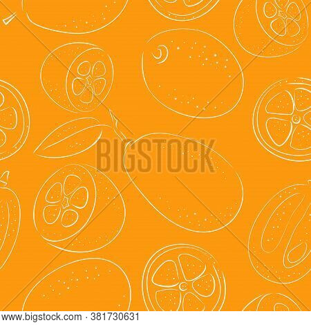 Seamless Pattern With Slices And Whole Kumquat Fruits. Vector Line Illustration In The Style Of Hand
