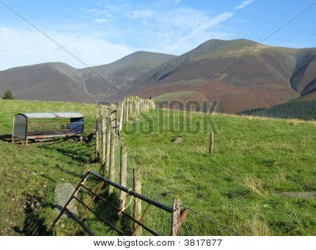 Skiddaw In The Sunshine