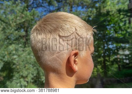 08/21/2020 Russia. St. Petersburg. The Head Of A Boy With An Author's Haircut, A Spider Web Over The