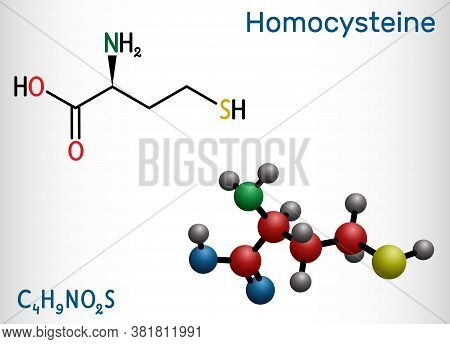 Homocysteine Biomarker Molecule. It Is A Sulfur-containing Non-proteinogenic Amino Acid. Structural