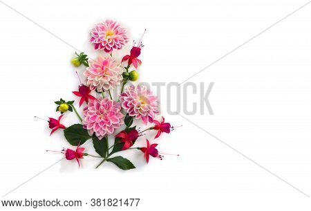 Flowers Pink Dahlia And Red Fuchsia Triphylla On A White Background With Space For Text. Top View, F