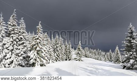 Winter Landscape Of Mountains With Of Fir Tree Forest And Glade In Snow With Path Under Forthcoming
