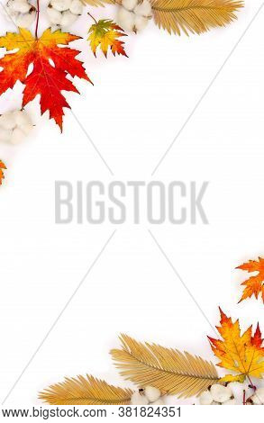 Frame Of Autumnal Maple Leaves, Golden Yellow Leaves Palm Tree, Cotton Flowers On White Background W