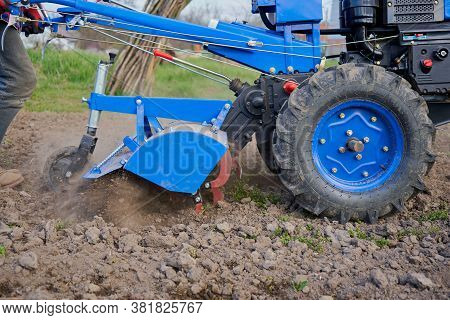 Motor Tractor Cultivation, A Farmer Cultivates The Land On A Two-wheeled Tractor In The Field