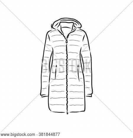 Vector Sketch Parka Jacket. Winter Outerwear. Warm Jacket, Vector Sketch Illustration