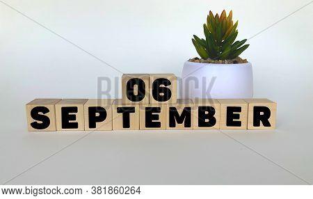 6 September .september 6 On Wooden Cubes On A White Background.pot With A Flower .calendar For Septe