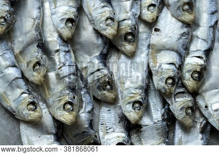 Rows Of Small Dried Sardines. An Overhead Close Up Photo Of Dried Sardines Laid In A Neat Pile.