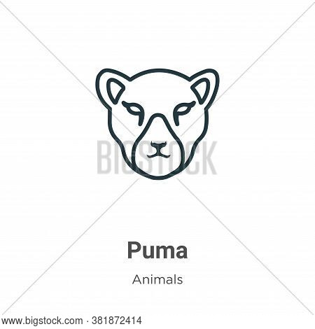 Puma icon isolated on white background from animals collection. Puma icon trendy and modern Puma sym