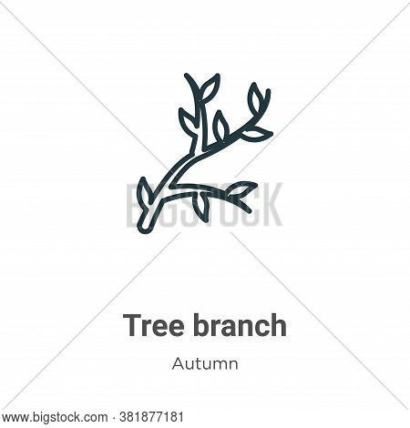 Tree branch icon isolated on white background from autumn collection. Tree branch icon trendy and mo