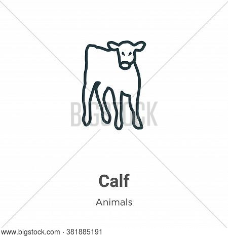 Calf icon isolated on white background from animals collection. Calf icon trendy and modern Calf sym