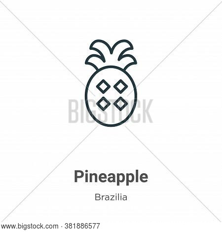 Pineapple icon isolated on white background from brazilia collection. Pineapple icon trendy and mode