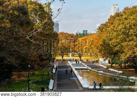 Tokyo, Japan, 11/11/19. Autumn View Of Yoyogi Park In Tokyo, With Colorful Autumn Trees, Pond, Peopl