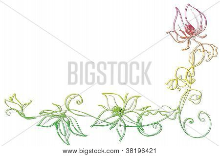 Colorful Flower Illustration
