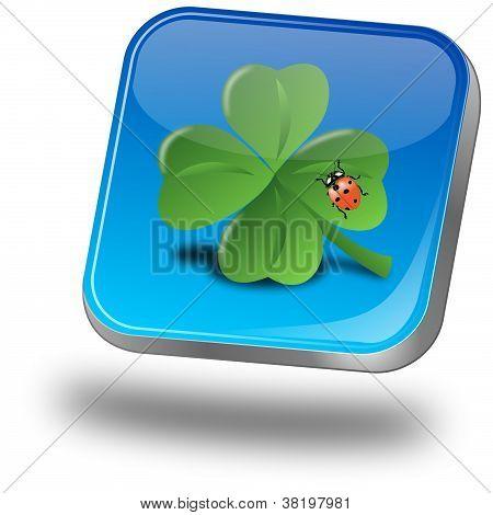 Button with shamrock and ladybug