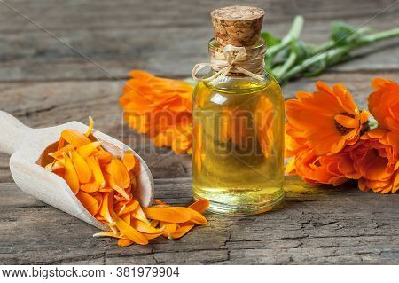 Glass Bottle Of Calendula Essential Oil With Fresh Marigold Flowers On Rustic Table. Aromatherapy Ma