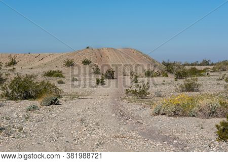 A Sand Dune In The Southern California Sonoran Desert, Usa, In The Spring, Featuring Tire Marks Goin