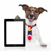 business dog tablet pc ebook computer notebook poster