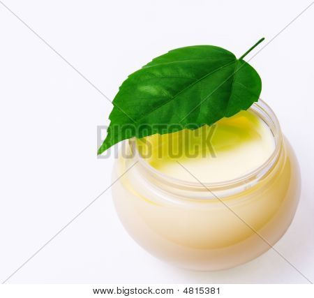 Fresh Green Leaf And Beauty Cream Isolated