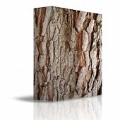 Square trunk of tree on a white background poster
