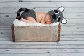 Five day old newborn baby boy wearing a gray crocheted raccoon costume and sleeping in a vintage wooden crate. Shot in the studio on a bleached wood background. poster