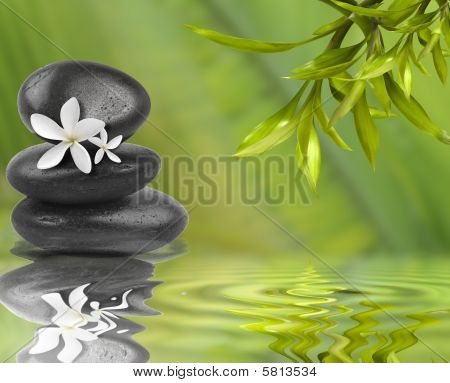 Spa Still Life, With White Flowers On Black Stones And Bamboo Leafs In The Water
