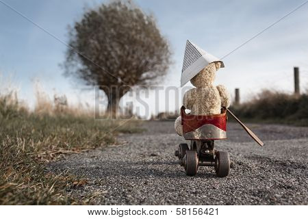Travel Bear