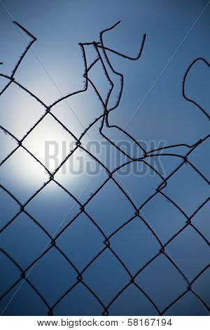 Metal Torn Grid