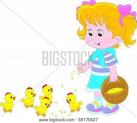 Girl feeds chicks