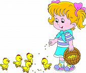 Little girl feeds a brood of small chickens poster