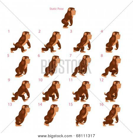 Animation of gorilla walking. Sixteen walking frames + 1 static pose. Vector cartoon isolated character/frames.
