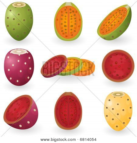 Icon Set Prickly Pear