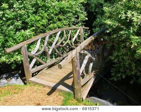 Bridge in the woods