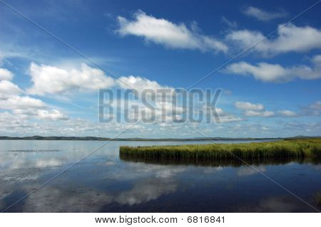 The Flower Lake