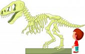 vector illustration of Boy with dinosaur skeleton at the museum poster
