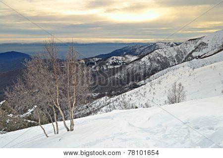 Winter Cloudscape